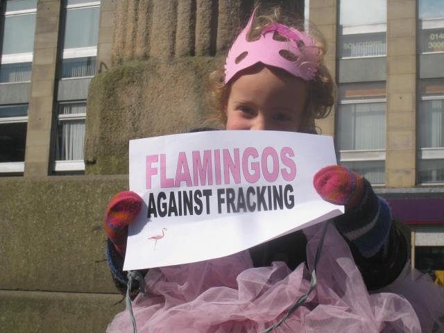 Flamingos against Fracking - stop Barclays fracking plans near Flamingo Land North Yorkshire